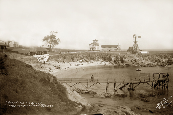 Loves Point 1903